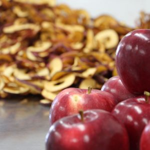 quebec-dehydrated-organic-apples-diced